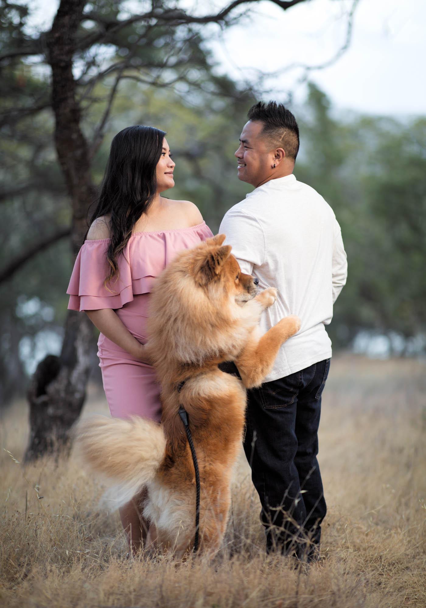 Family photo by Jason Guy