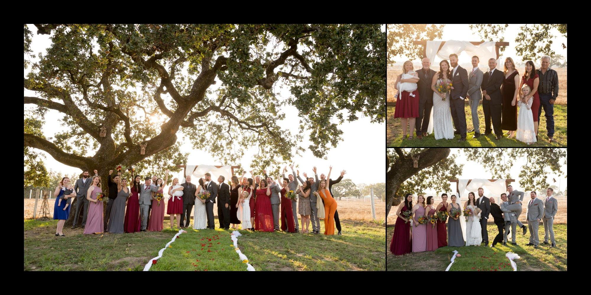 Group photos of bridal party at wedding