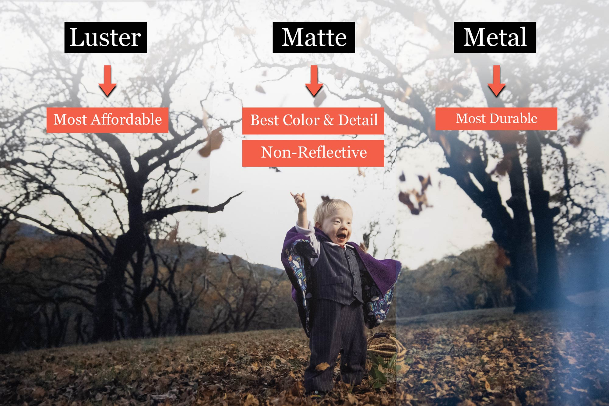 You are currently viewing Luster vs Matte vs Metal Prints: The Pros and Cons of Each Option